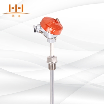 WZPF-230F 固定螺纹式防腐热电阻的图片